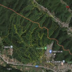埼玉県飯能市(山林64,000坪!)